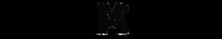 Selio Medical Logo Merged (1).png