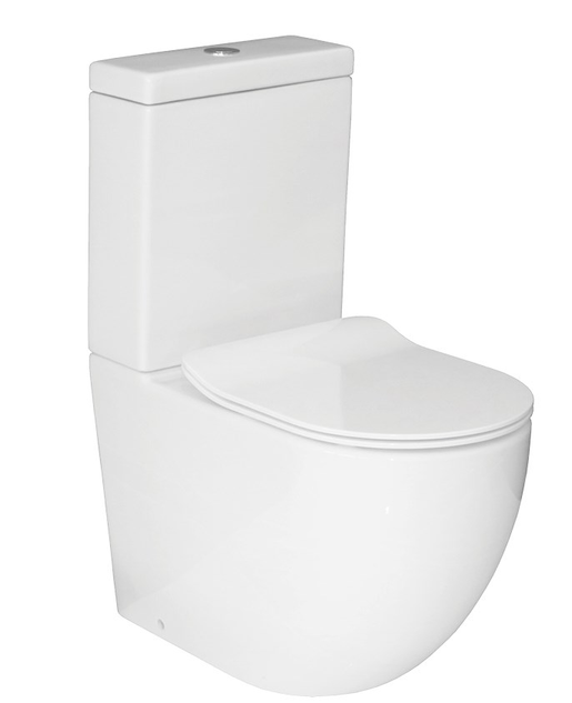Zen Rimless Back To Wall Toilet