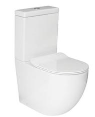 Zen Rimless Back To Wall Toilet
