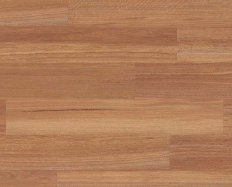 Natural Spotted Gum KP142
