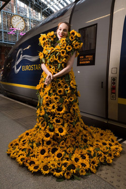 Eurostar Sunflower Campaign