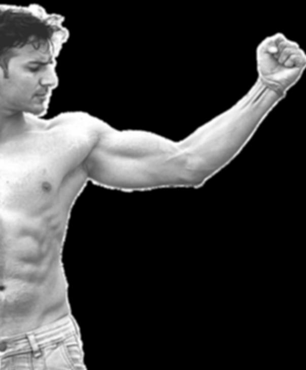 biceps-2945912_1920.png