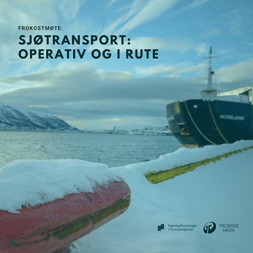 Sjøtransport: Operativ og i rute