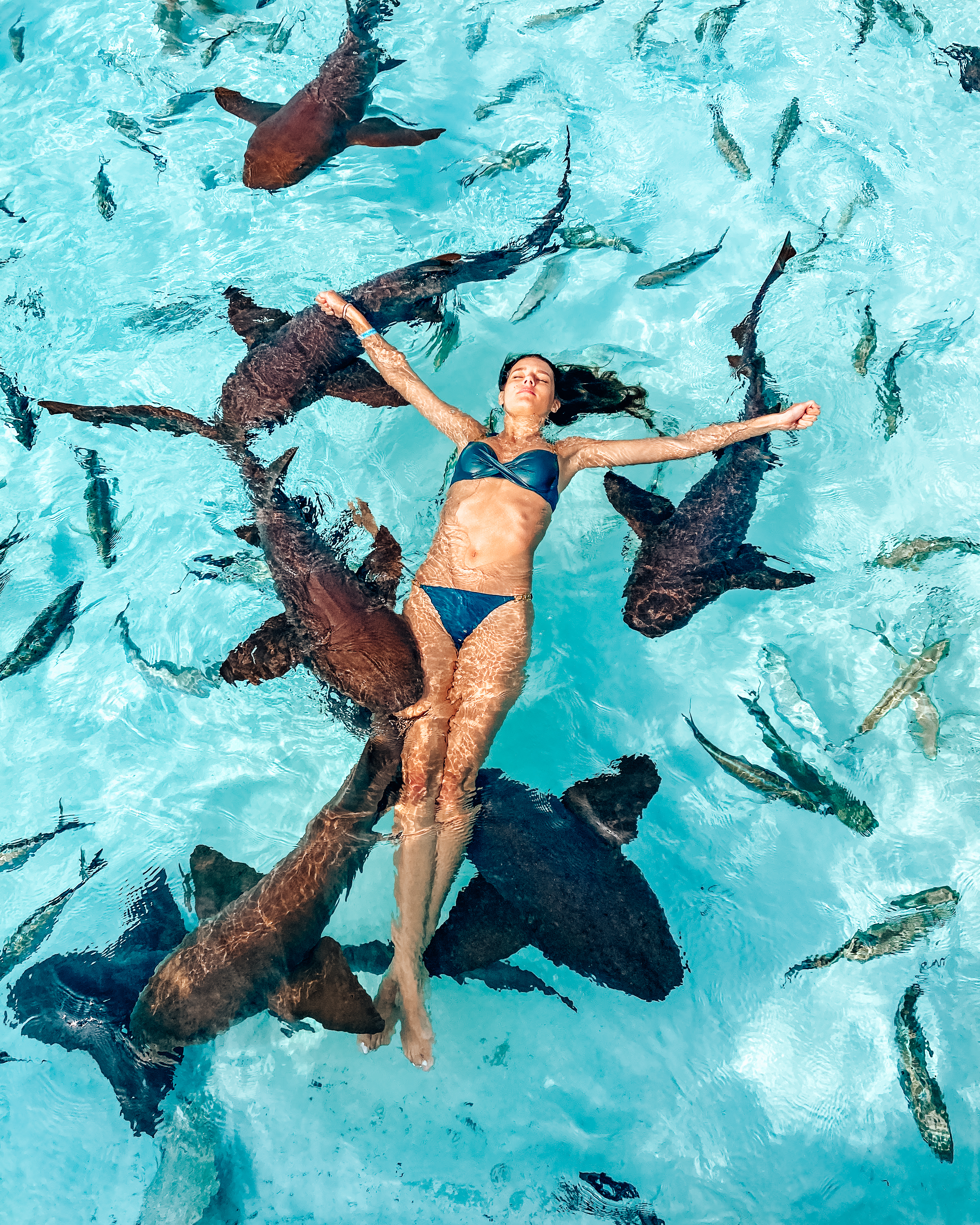 Girl swimming with nurse sharks at Compass Cay