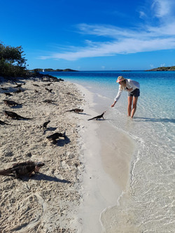 Girl feeding an iguana at Allen's Cay, Exuma