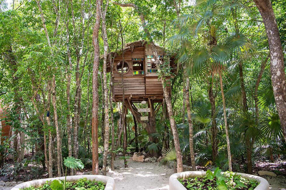 Holistika Tulum Tree House