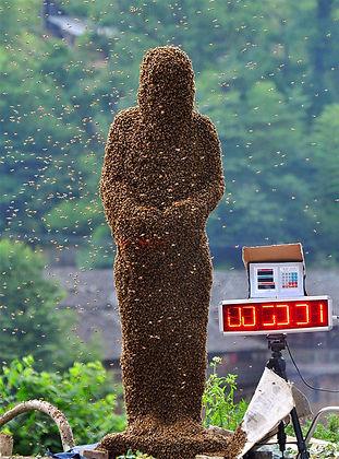 human bee.jpg
