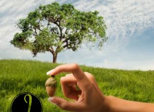 Nurture Your Crop!
