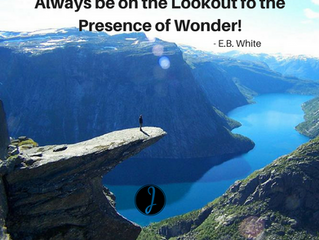 Be on the Lookout for Wonder
