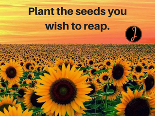 Here's To an Abundant Harvest