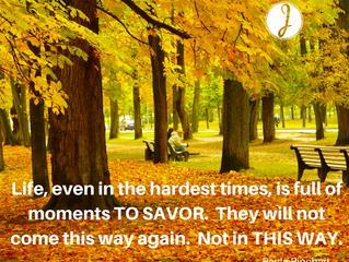 Savor Life's Moments