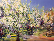 Hallaian Ranch Orchard