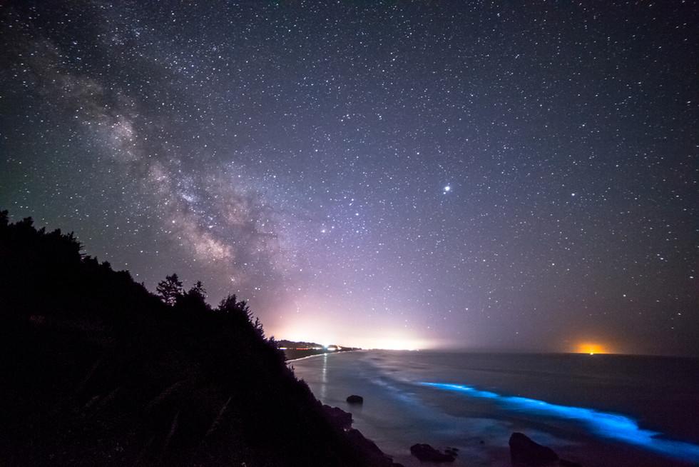 Milky Way and Bioluminescence