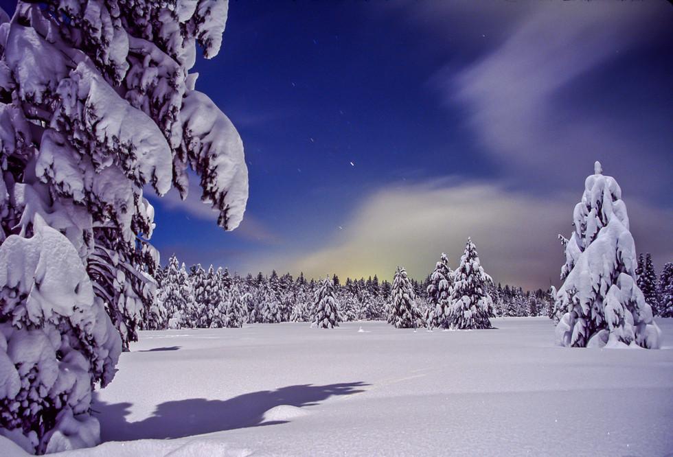 Full Moon Snowscape