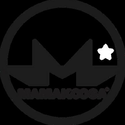 Logo Elipse total 2.png