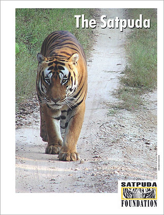 The Satpuda
