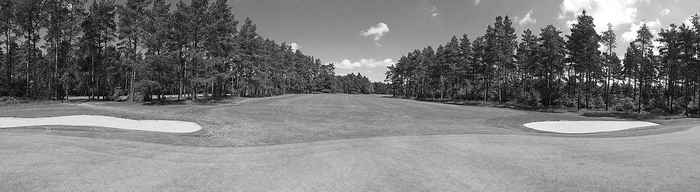 golf-2158897_1920_edited.jpg
