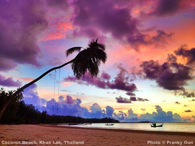 coconut_beach_36.jpg