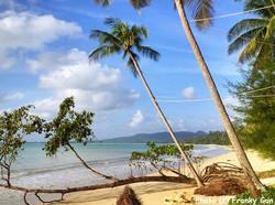 coconut_homes_43.jpg