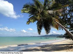 coconut_homes_16.jpg