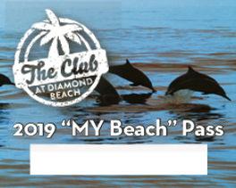 Jpeg 2019 Beach Pass.jpg