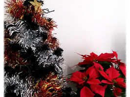 クリスマス準備始めました!!