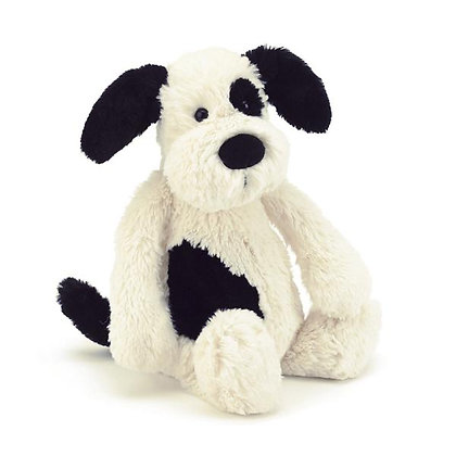 Medium Bashful Puppy
