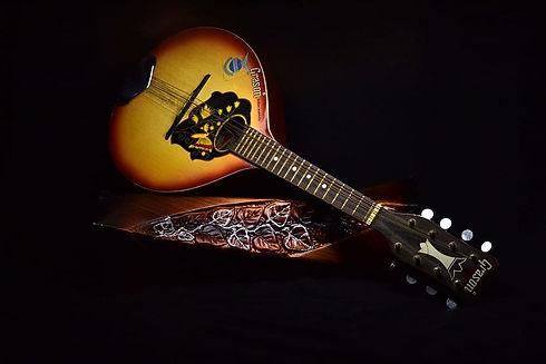 instrument-mandolin-musical-instrument-m