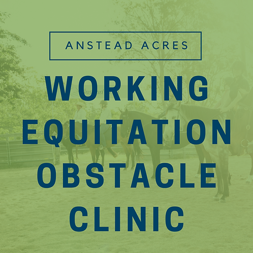 Working Equitation Obstacle Clinic