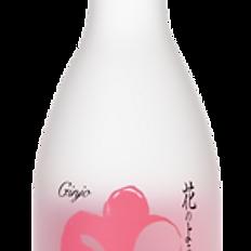 Sho Chiku Bai Ginjo (300ml)