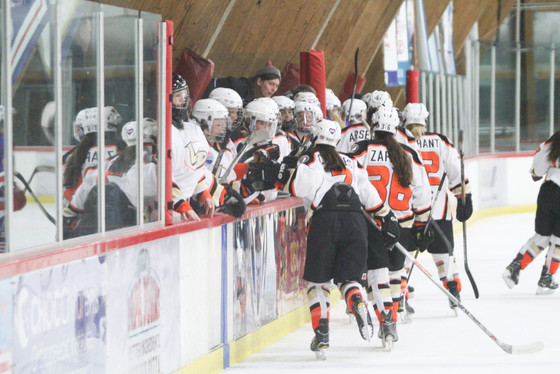 2017-18 Tier I Tryout Information