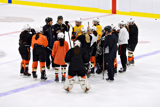 2019-20 Anaheim Lady Ducks Tier 1 Coaches and Tryouts
