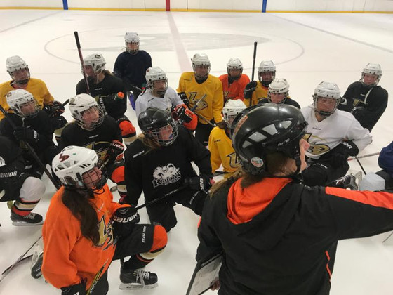 Introducing the Lady Ducks Girls ADM Clinics
