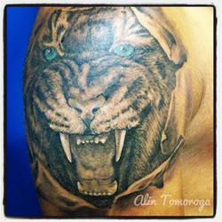 Tiger Broken Skin
