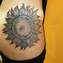 SunFlower [reproduction]