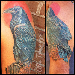 Raven Color Tattoo