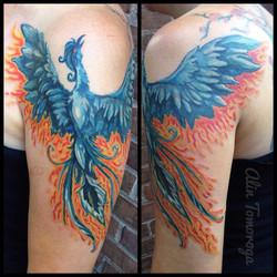 Blue Phoenix [reproduction]