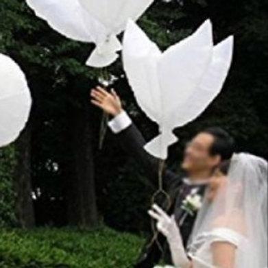 Balloon White Dove