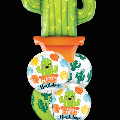 Birthday Cacti Balloon Mix - Pkt of 5 balloons