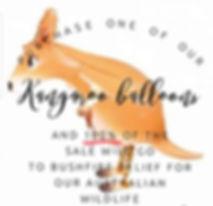 Kangaroo Balloon