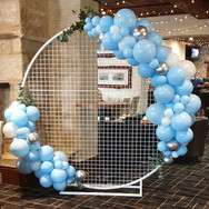 Mesh Balloon Frame
