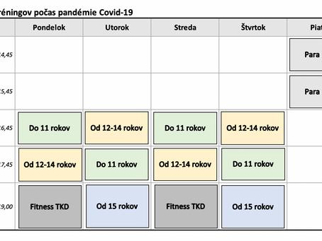 Rozpis tréningov počas pandémie - Kulturpark Košice