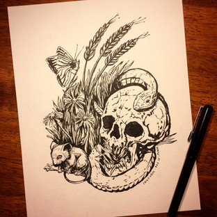 Illustration & Concept Design