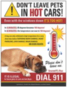pets-in-hot-cars-w2.jpg