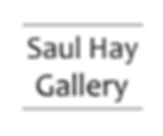 Saul Hay Gallery Logo (300ppi) (1).png