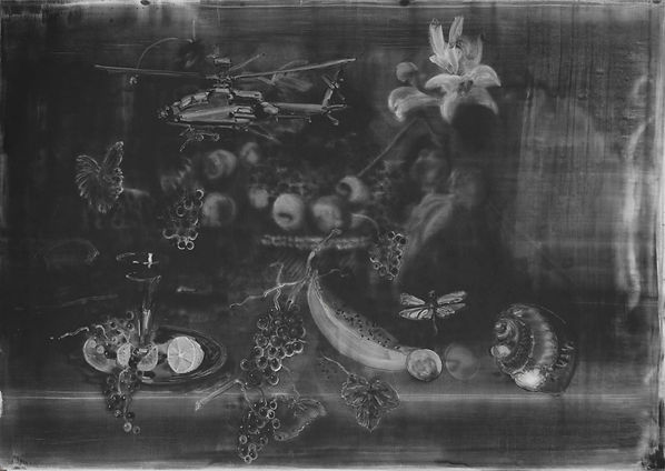 Christopher Cook Still life with dragonf