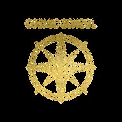 CosmicSchool_Transp.png