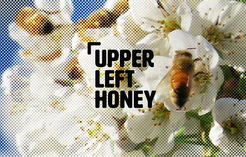 Upper Left Honey copy.jpg