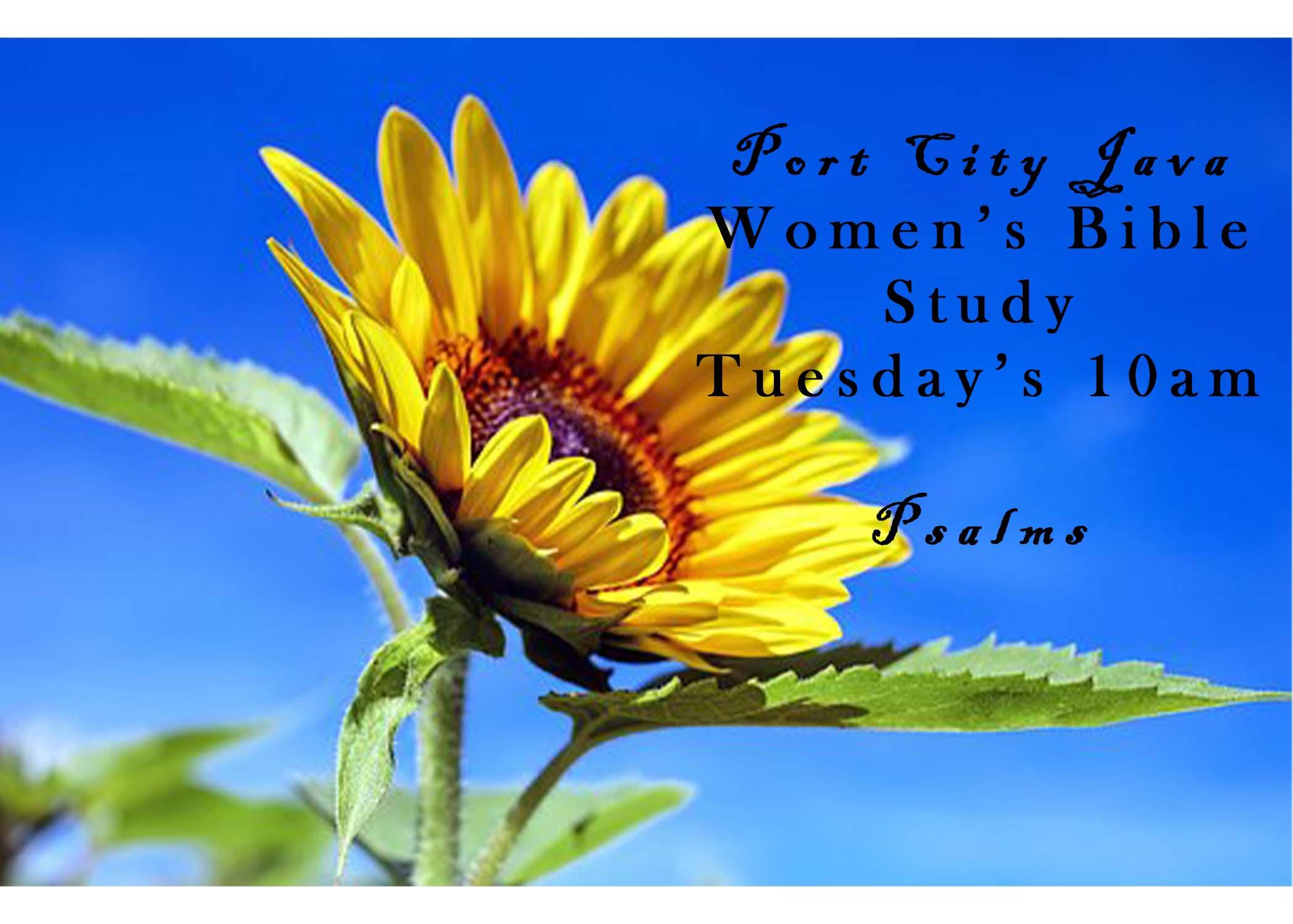 Women's bible Sudy