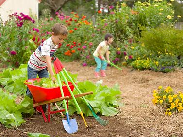 Children Gardening.png